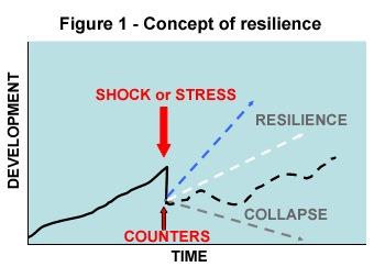 concept-resilience-jan06.jpg